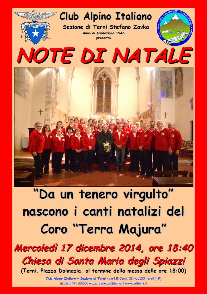 Locandina Spiazzi 2014-12-17